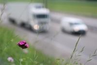Petitie stelt Hankse problematiek rond A27 aan de kaak